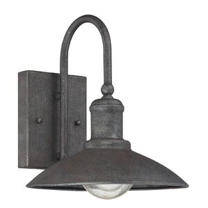 Tylersburg Outdoor Wall Lantern