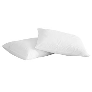 Natural Memory Duck Feather Queen Pillow (Set of 2)