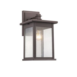 Kaufmann 1-Light Outdoor Wall Lantern