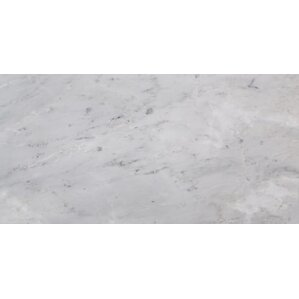 Marble 12'' x 24'' Field Tile in Arabescato Carrara
