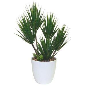 Faux Alocacia Succulent Plant in Pot