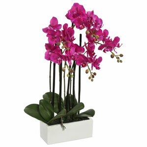 Artificial Orchid Flowers in Vase