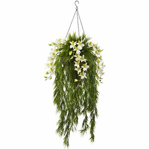 Bamboo and Dendrobium Hanging Flowering Plant in Basket