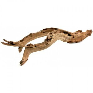 Brianna Decorative Driftwood Branch