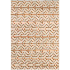 Exceptional Ginsberg Light Gray/Burnt Orange Area Rug