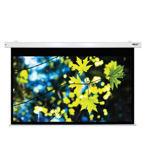 Matte White Electric Projector Screen by Hamilton Buhl