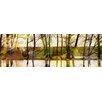 Parvez Taj 'Marmont Hill Lake Trees' by Parvez Taj Framed Graphic Art Print on Wrapped Canvas