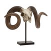 Woodland Imports Fascinating Polystone Sheep Skull Bust on Stand