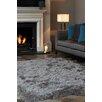 Asiatic Carpets Ltd. Cascade Taupe Area Rug