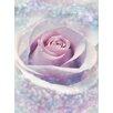 Komar Delicate Rose 2.5m x 184cm Wallpaper Roll