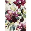 Urban Designs King William Multi-Colour Area Rug