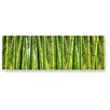 LanaKK Bamboo Forest Photographic Print Plaque