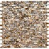 "EliteTile Shore Subway 0.38"" x 0.75"" Natural Seashell Mosaic Wall Tile in Perla Brown and Cream"