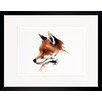 House Additions Fox Framed Art Print