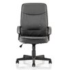 Home & Haus Blitz High-Back Leather Executive Chair