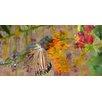 Parvez Taj Hidden Humming Bird Art Print Wrapped on Canvas