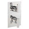 Belfry Bathroom Gray Twin Concealed Shower Valve with Diverter