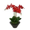 House of Silk Flowers Inc. Artificial Triple Stem Orchid in Round Zinc Vase