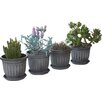 Gablemere Round Plant Pot (Set of 4)