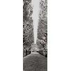 DEInternationalGraphics Palais Royal - Paris - France by Helmut Hirler Photographic Print