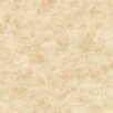 """York Wallcoverings Brights 27' x 27"""" Painterly Texture Roll Wallpaper"""