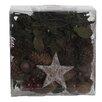 The Seasonal Aisle Decorative Box of Natural Xmas Fruits