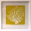 Castleton Home Pop Coral I Framed Graphic Art