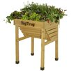 VegTrug Rectangular Raised Garden
