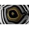 Marmont Hill Nucleus Graphic Art Wrapped on Canvas