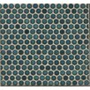 "Penny Round Mosaic 12"" x 12"" Porcelain Tile in Blue"