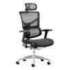 Dynamic Office Seating High-Back Mesh Desk Chair with Arms and Headrest