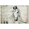 Oliver Gal 'Antiqus Equus' Graphic Art on Wrapped Canvas