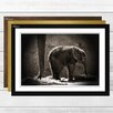 Big Box Art 'Mother and Baby Elephant 3' Framed Photographic Print
