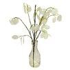 Beachcrest Home Silver Dollar in Glass Vase