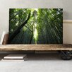 Big Box Art Landscape Sunlight through Forest Woodland Photographic Print on Canvas