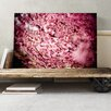 Big Box Art Pink Cherry Blossom Tree Flowers Photographic Print on Canvas