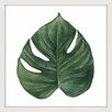 "Marmont Hill ""Top Leaf II"" by Shayna Pitch Framed Graphic Art"