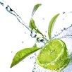 Spiegelprofi GmbH Lime Photographic Print on Canvas