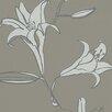 Raffi Lilium 10.05m L x 53cm W Roll Wallpaper