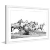 Marmont Hill 'Horseplay' Framed Painting Print