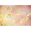 """Marmont Hill """"Sunshine"""" by Morgan J Hartley Graphic Art on Wrapped Canvas"""