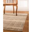 Natural Area Rugs Cascadia Beige/Brown Area Rug