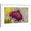 Marmont Hill Colorful Composition Framed Photographic Print