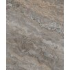 "Seven Seas Silver Trevertine 6"" x 12"" Marble Field Tile in Brown"