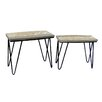 Castleton Home Morgat 2 Piece Nest of Tables