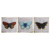 Castleton Home 'Butterfly' 3 Piece Graphic Art Set on Wood