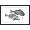 Marmont Hill 'Striped Seabream' by Andrew Clay Framed Art Print