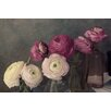 Marmont Hill 'Baroque Ranunculus' by Judy Stalus Painting Print on Wrapped Canvas
