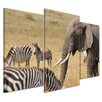 Bilderdepot24 Africa (Zebra and Elephant) 3-Piece Photographic Print on Canvas Set