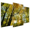 Bilderdepot24 Falling Leaves in Autumn 3-Piece Photographic Print on Canvas Set